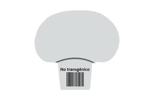 Certificado producto no transgénico
